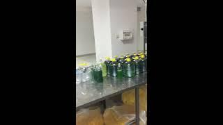 Производство жидкого мыла. Производство жидкого средства для стирки. Производство мыла.(Линия производства жидких моющих средств. 4 реактора по тонне. Линия розлива на 5 литров. Линия розлива от..., 2016-10-04T13:20:48.000Z)
