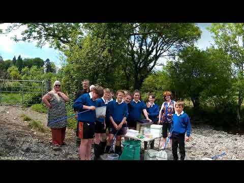 Streamscapes with the Coomhola School , Priests Leap, West Cork
