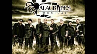 Abrazado de un poste (Alacranes Musical)