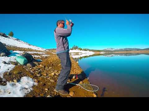 Trout Fishing To Escape The Pandemic Madness(Prosser Creek Res., Truckee)