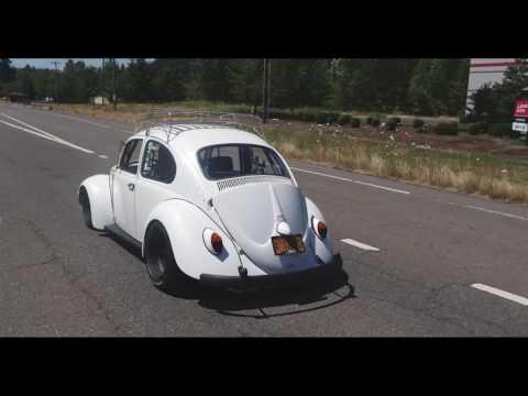 Uncommon Performance: Volkswagen Beetle - Roadkill