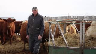 Transfert innovant d'une entreprise familiale en production bovine.
