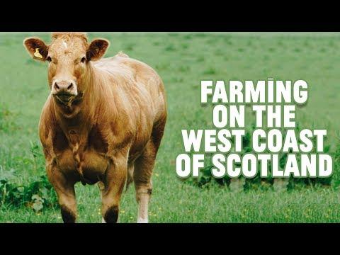 Farming on the west coast of Scotland