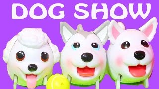 DOG SHOW Chubby Puppies NEW 2015 Puppy Toy Ultimate Dog Park COMPETITION Poodle Husky Pomeranian