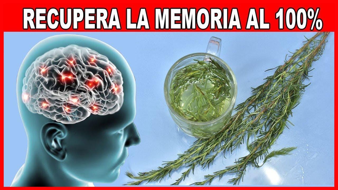 Esta Hierba te hará Recuperar tu Memoria al 100%🧠 Te Protege del Alzheimer, Depresión y Más