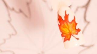 Рисунки гель лаком на ногтях. Маникюр кленовый лист. Осенний дизайн ногтей пошагово(Кисть из видео: http://ali.pub/hsizy Желтые листья на ногтях - https://youtu.be/3Hw_w4fRVjo Осенний френч - https://youtu.be/9rJbrx7NJNw Полезны..., 2016-09-02T10:33:31.000Z)
