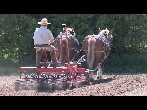 Orchard Hill - Horse-powered Organic Farm Part 2 - Horse Drawn Farming Implements