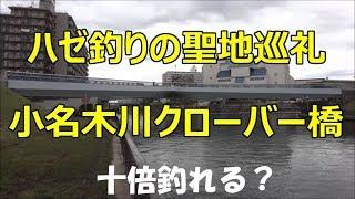 ハゼ釣りの聖地巡礼 小名木川クローバー橋 thumbnail