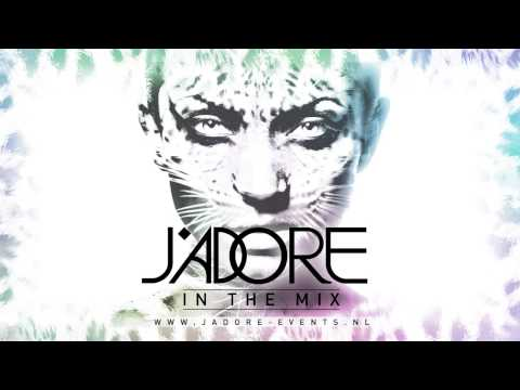J'Adore In The Mix