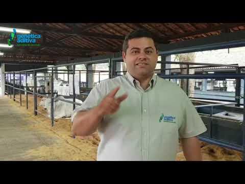 Flavio Sandim convida a todos para vistoriarem os animais, estamos no pavilhão 37 e 38.