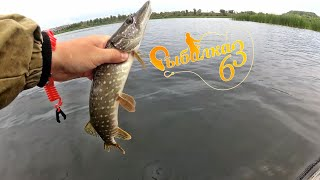 Окунь на поверхностные приманки Поппер, Весёлая ловля окуня, рыбалка на спиннинг
