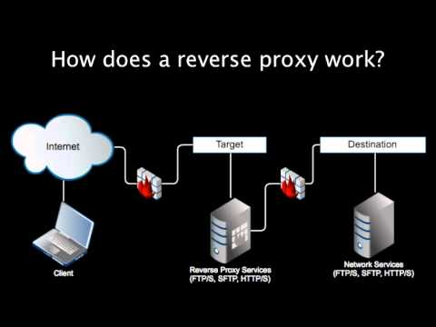 Introducing Reverse Proxy Servers