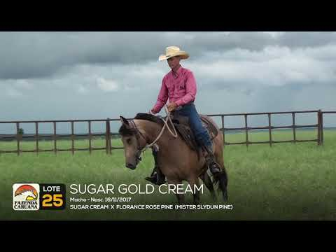LOTE 25 - SUGAR GOLD CREAM