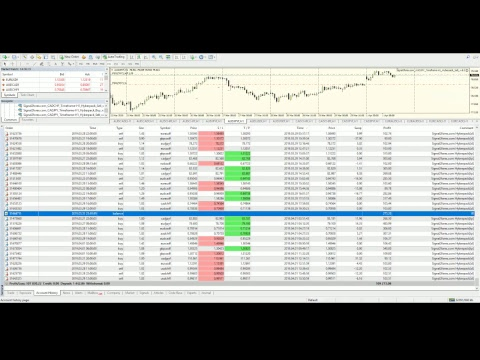 Forex robots portfolio for auto trading at forex market with Metatrader 4