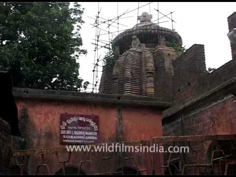 Mahakala - Mahakali shrine is near Singh Dwar, Bhubaneswar