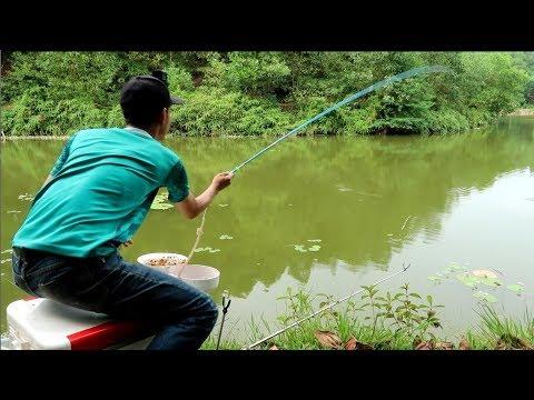 Câu Đài - Buổi Câu Cá Siêu Cảm Giác Và Thư Giãn