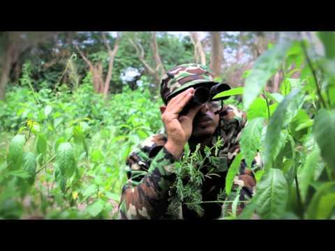 DJ Nicholas - When Mi Tek A Pree (Official Video)