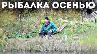 Какая рыба хорошо клюет осенью по холодной воде Какую рыбу пойти половить осенью