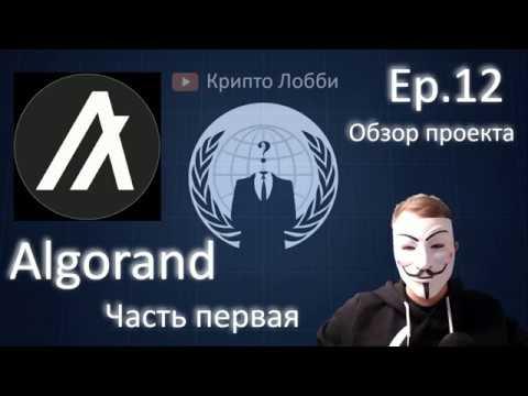 12ep. Algorand (ALGO). Обзор проекта. ч.1. Общий скоринг.