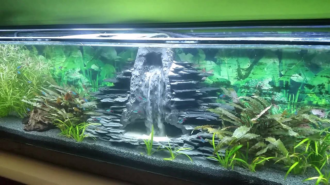 Aquarium sandwasserfall - YouTube