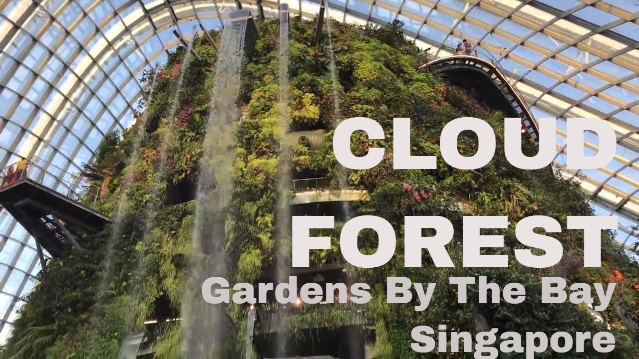 Cloud Forest - Gardens By the Bay Singapore - YouTube