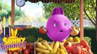 SUNNY BUNNIES | FRUIT STALL | Cartoons for kids | WildBrain