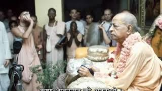 Prabhupada 0349 मैंने तो बस विश्वास किया जो भी मेरे गुरु महाराज नें कहा