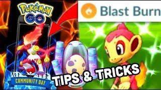 Shiny Chimchar Community Day tips for Pokemon GO   Blast Burn Infernape