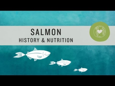 Salmon History And Nutrition - Superfoods