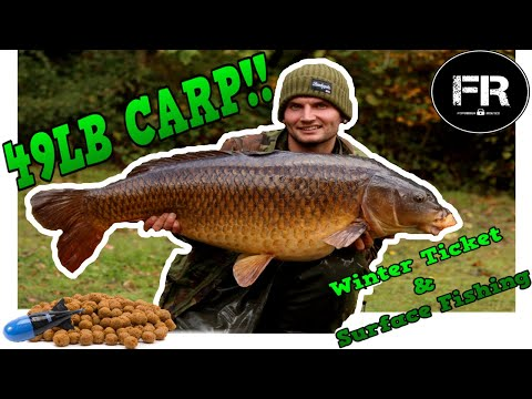 BEAST OF A CARP **** Carp Fishing **** Winter Tickets And Surface Fishing At Wintons.