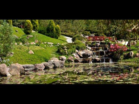 Jardines de m xico el jard n mas grande del mundo youtube for Jardines mexico