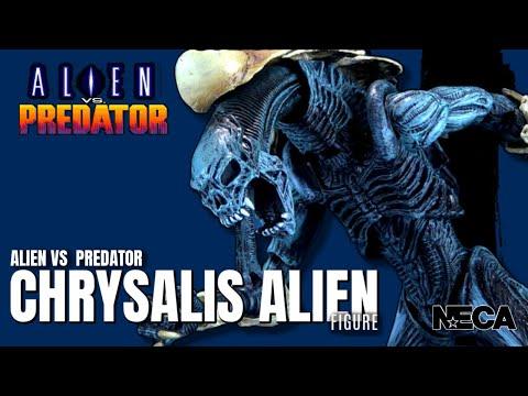 NECA Alien Vs Predator Chrysalis Alien | Video Review #HORROR