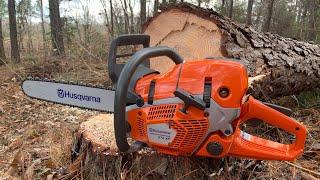 NEW Husqvarna 572XP!!!!!! #husqvarna #chainsaw
