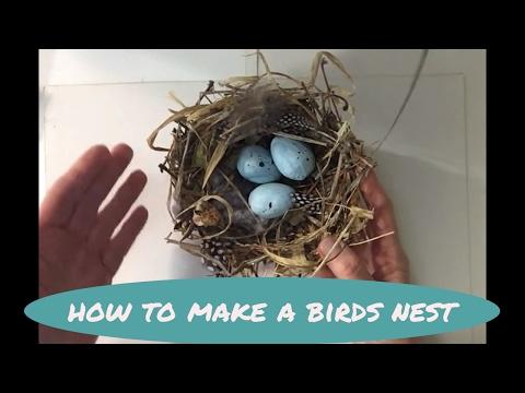 How to make a bird's nest: MIMI'S SKETCHBOOK