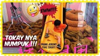 Download Video KU CAPIT TOKAY NYA UNTUK NGE PRANK SI JEREMY !! 🤣💩 CLAW MACHINE #  夾娃娃 MP3 3GP MP4