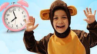 Как проводит свой день веселая маленькая обезьянка