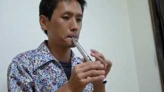 Chieftain Tin whistle D - チーフテン ティン・ホイッスル D管