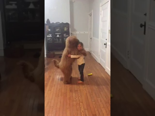 Little girl dancing with her dog