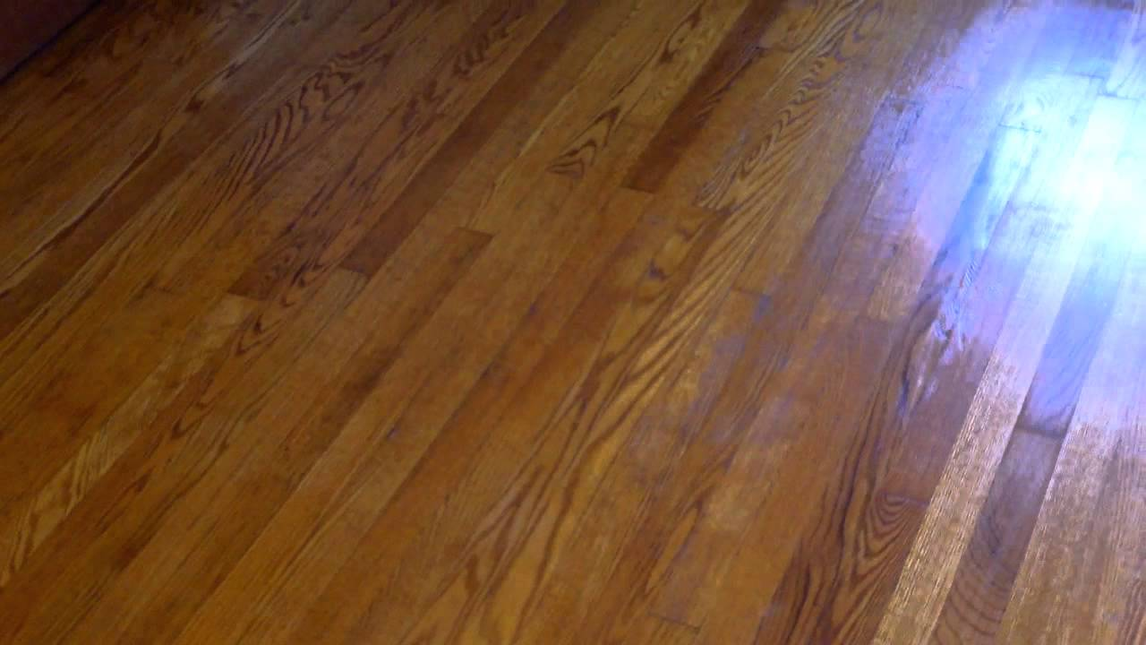 Refinishing hard wood flooring with Zar stain and water based polyurethane  YouTube
