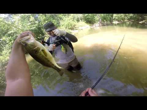 Creek Fishing In Austin Texas (Bass Fishing) 1080p HD