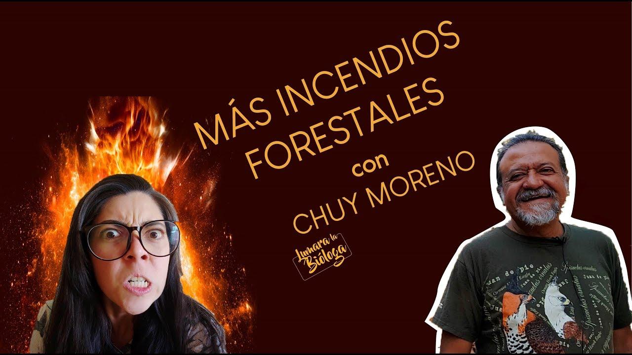 Bosque La Primavera e Incendios Forestales ¿Cómo ayudar?  Entrevista a Chuy Moreno