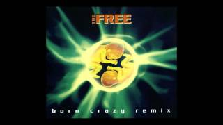 The Free - born crazy (Extended Mix) [1994]