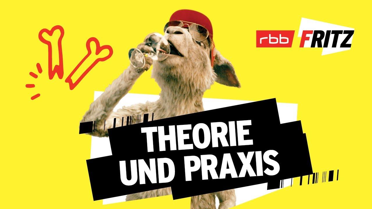 Theorie und Praxis   Neues vom Känguru reloaded   Marc-Uwe Kling   Känguru-Chroniken-Storys