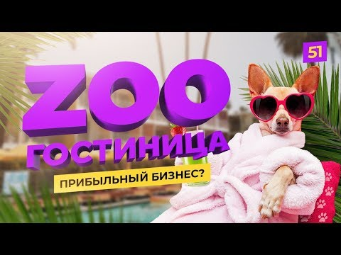 Гостиница для животных. Сколько стоит запуск? Идея для бизнеса.
