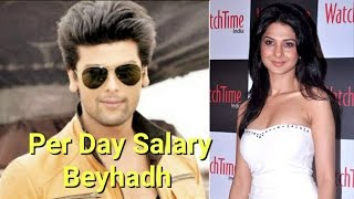 Per Day Salary Of Beyhadh Actors