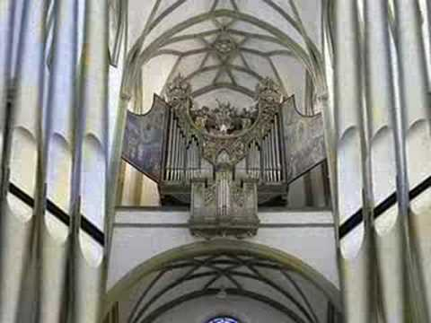 Dangerous Organ II: The only pipe organ with 128' stop