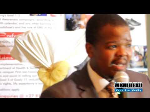 Lesego Tau (The Universe) by Mduduzi Mathebula