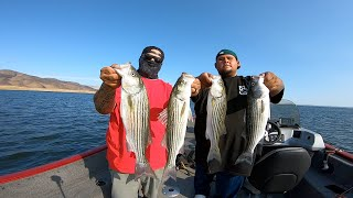 TRACKER PRO GUIDE 175 OCTOBER STRIPER AT SAN LUIS RESERVOIR TOP WATER LURES DOUBLE LIMITSS