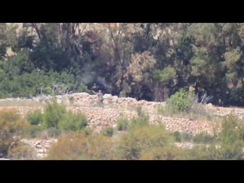 Illegal Hunting In Foresta 2000 Bird Sanctuary, Malta, 18th April 2013