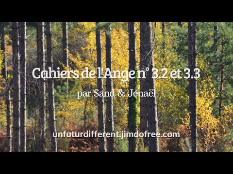 CAHIER 3.2 & 3.3 : Ne pas confondre le
